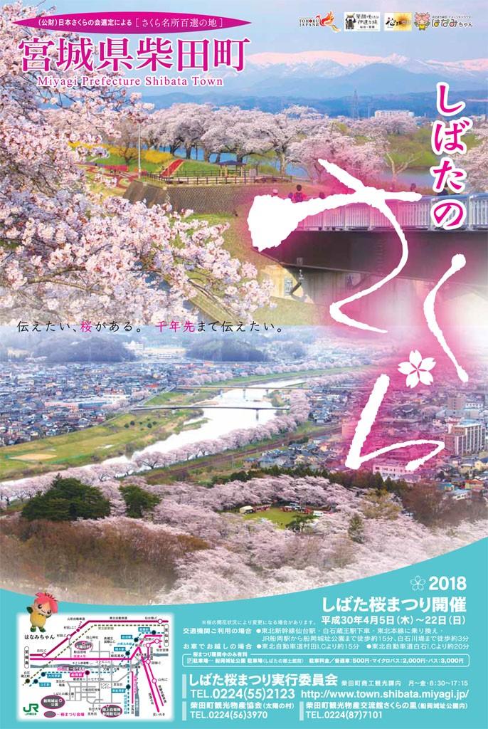 18桜ポスターC+A